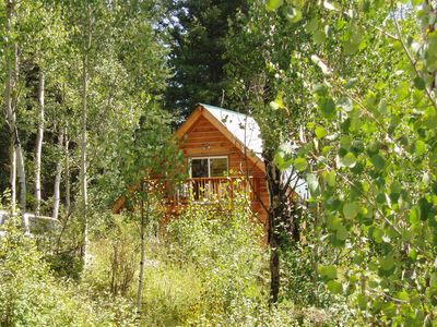 Photo for Surrounded by Aspen Trees and Woods