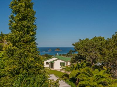 Photo for Treehouse - Hahei Holiday Home