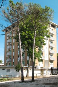 Photo for Apartment Torre Panorama in Bibione - 6 persons, 2 bedrooms