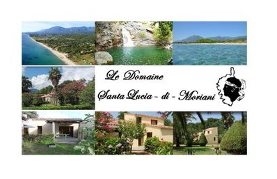 Photo for The Estate: villa in Santa Lucia di Moriani for 8 people