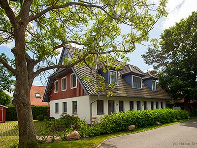 Photo for Holiday home for 6 guests with 72m² in Zingst (21783)