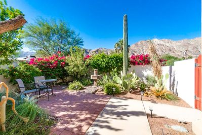Backyard - Welcome to La Quinta! Desert plantings characterise the front yard.