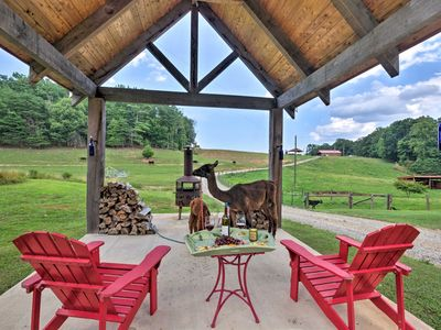Photo for Cabin on Working Alpaca Ranch, Near Wineries!
