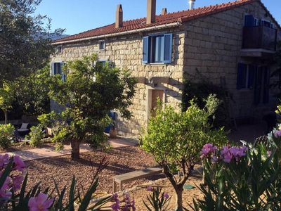 Photo for Very nice mill with swimming pool, sea Figari