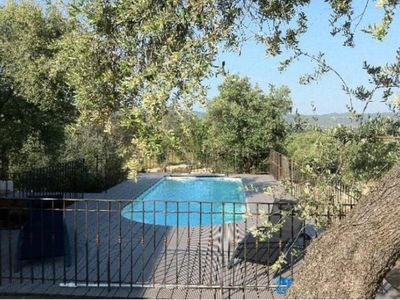 Photo for House surrounded by ancient olive trees