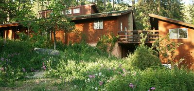 Photo for Sunny Pines Traditional Cottage