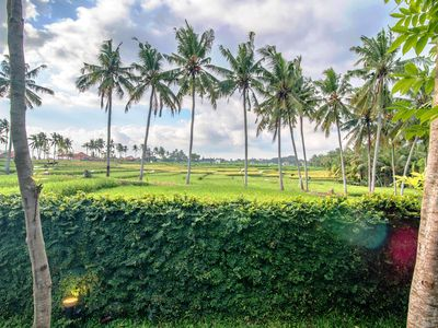 Photo for Paddy view. Villa Aist.