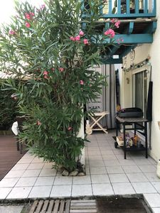 Photo for Ground floor apartment, 4 people, swimming pool, La Teste de Buch, close to shops