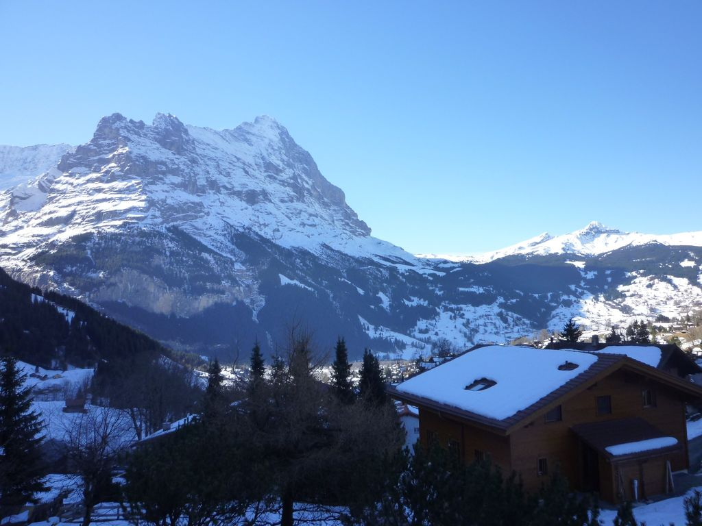Property Image#5 Cosy 3 1/2 apartment with stunning panoramic views of the & Cosy 3 1/2 apartment with stunning panoramic views of the Eiger ...