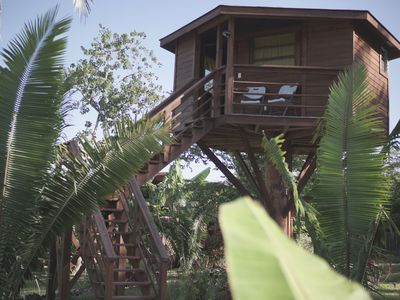 Photo for Tree house with pool access near ATM