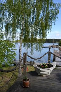 Photo for Waterfront location in the quiet area, rowboat included, Stockholm archipelago