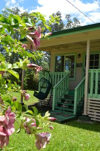 Photo for Hibiscus Cottage in private Puna Rain Forest