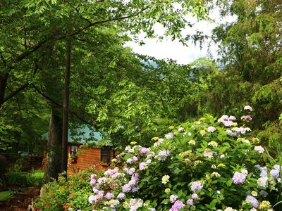 Photo for Mountain Getaway For Couples! 17 miles to Asheville, Pet Friendly, Hot Tub