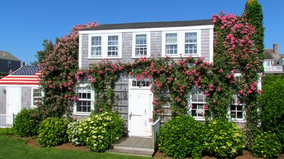 Photo for Authentic Nantucket Rose-covered Summer Cottage On 'Sconset Bluff