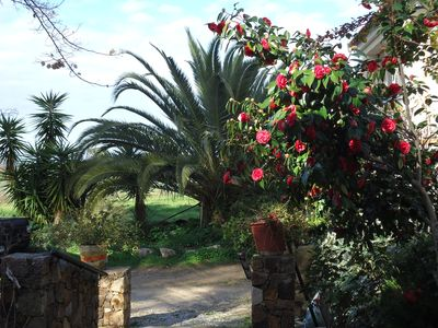 Photo for 1BR Apartment Vacation Rental in Calenzana, Corse