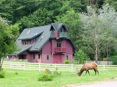 Photo for Contemporary Farmhouse at Redwood National Park
