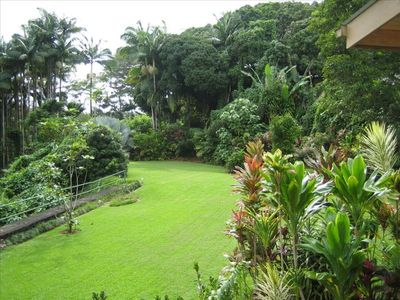 Photo for Gorgeous 1-BR on Hamakua Coast - 5 Min to Dtwn Hilo - $99/nt
