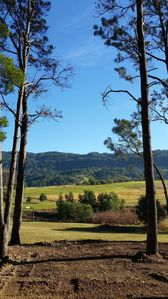 Beautiful view from the pine forest...this will be a lovely space for a wedding