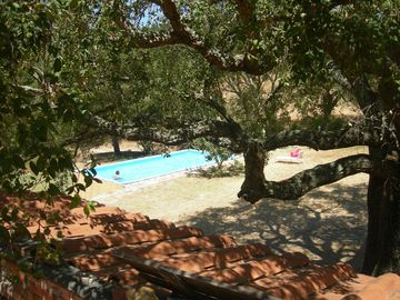 Apartment in Farmhouse  between the seaside and Siena - apartment 4-5 pers. 2 bedrooms on the ground floor