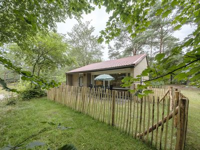 Photo for 6-person dog bungalow in the holiday park Landal Coldenhove - in the woods/woodland setting