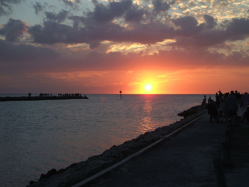 Vacation Rentals On The Beach In Venice Florida