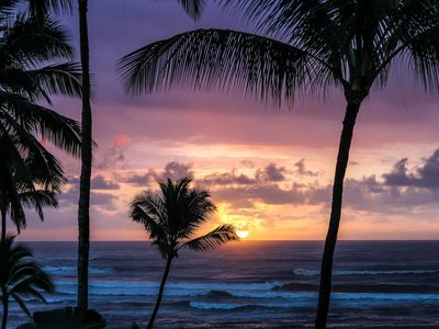 Photo for Kauai Oceanfront Beach Sunrise at Islander on the Beach 259 Studio at only $139