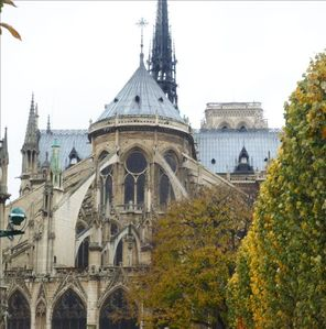 Notre Dame cathedral - 2 minutes walking distance