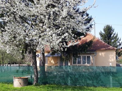 Photo for Great holiday home right on the Danube! Hungary instead of the sea!