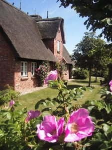 Photo for 2BR House Vacation Rental in Oevenum