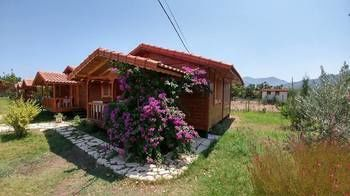 Photo for Guest House/pension Vacation Rental in Kemer,