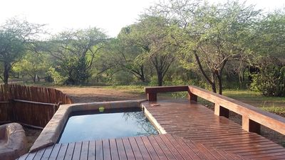 Photo for Marloth Kruger Whispering Ants