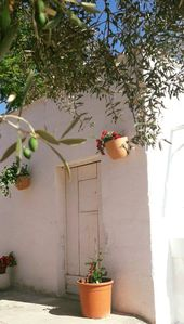 Photo for Apartment in vacation home among the Apulian olive trees for moments of total relaxation