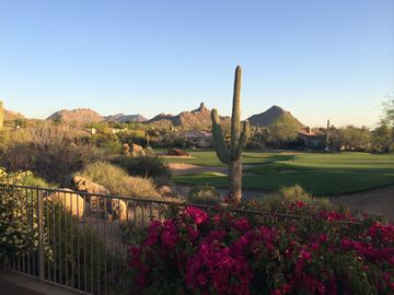 4 Bedrooms, Best Back Yard, Golf Course and Pinnacle Views!