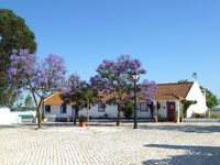 The best way to experience Alentejo