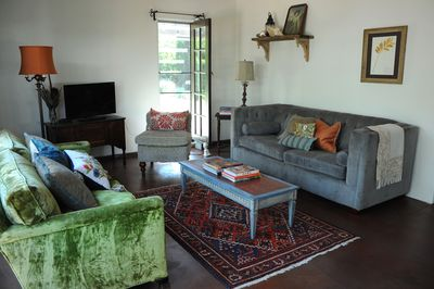 Two sofas, one vintage velvet and one contemporary for easy visiting/television.