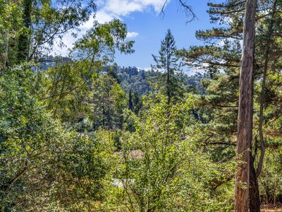 Photo for 1BR House Vacation Rental in Oakland, California