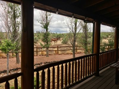 Photo for Willow's Retreat: Spacious 3bdr Bison Ranch Cabin w/King bed. Views +Wild Horses