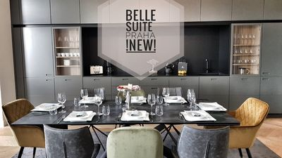 NEW !! PRAHA BELLE SUITE * river view * next to dancing house