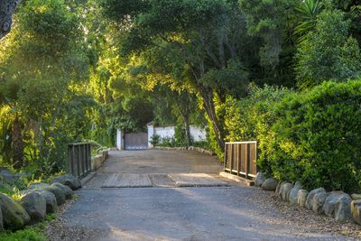 The private drive leading to the entrance of the estate!