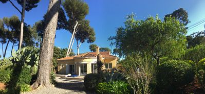Photo for Cap d'Antibes, Charming Villa in a Pinewood near the sea