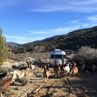 Photo for 1BR Recreational Vehicle Vacation Rental in Valyermo, California