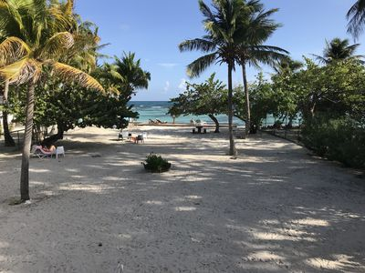 Photo for COCONUTPLAGE, tourist rental by the sea on its beach