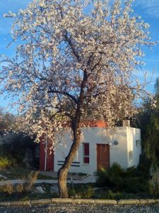 Photo for Self catering cottage La Aldea for 2 people