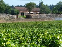 The best stay in Burgundy ever