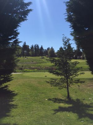 Our view of the golf course from the backyard