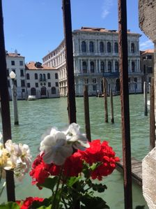 Photo for Grand Canal Rialto Palace Lift - Apartment for 9 people in Venice