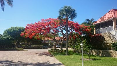 Photo for Best rate 2 bedroom at Sanibel Arms