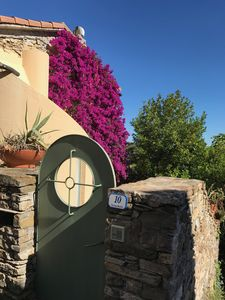 Photo for Villa 'MARCELLO'; 400 year old olive press, free view of the sea