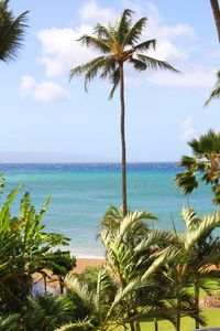 Photo for Maui Beautiful Westside Beach Front Condo