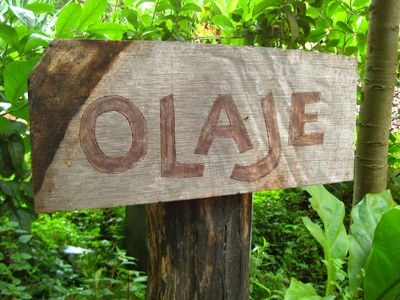 Welcome to O-LÁ-HEY. (ocean swell). See our Flickr site. Search 'Olaje.""